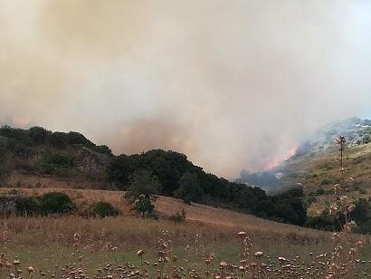Oltre centocinquanta ettari in fumo fra Furtei e Segariu. Il racconto di un volontario e il grazie dell'Unione alle forze in campo