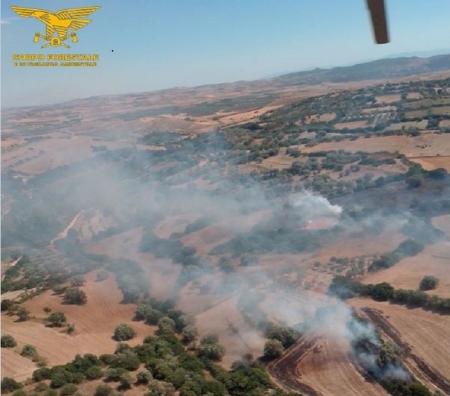 A Villanovafranca è allarme incendi: quindici in un mese e mezzo
